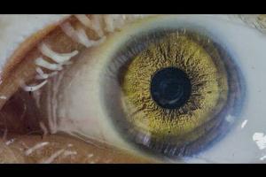 Embedded thumbnail for Moenia - Solo Lastimaste (Feat. Della Ciprian)